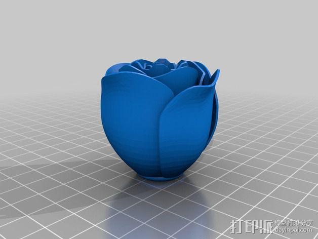 玫瑰花  3D模型  图3
