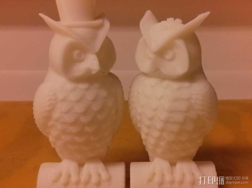 猫头鹰情侣 模型 3D模型  图1
