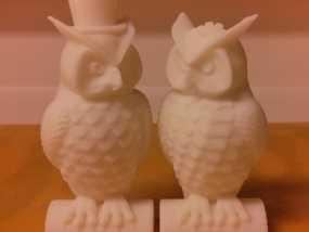 猫头鹰情侣 模型 3D模型