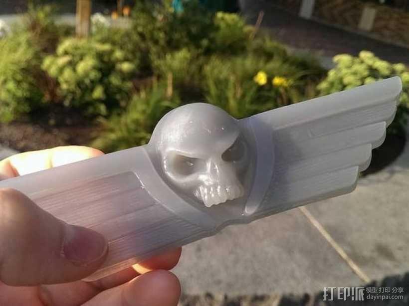 飞行的骷髅头 3D模型  图1