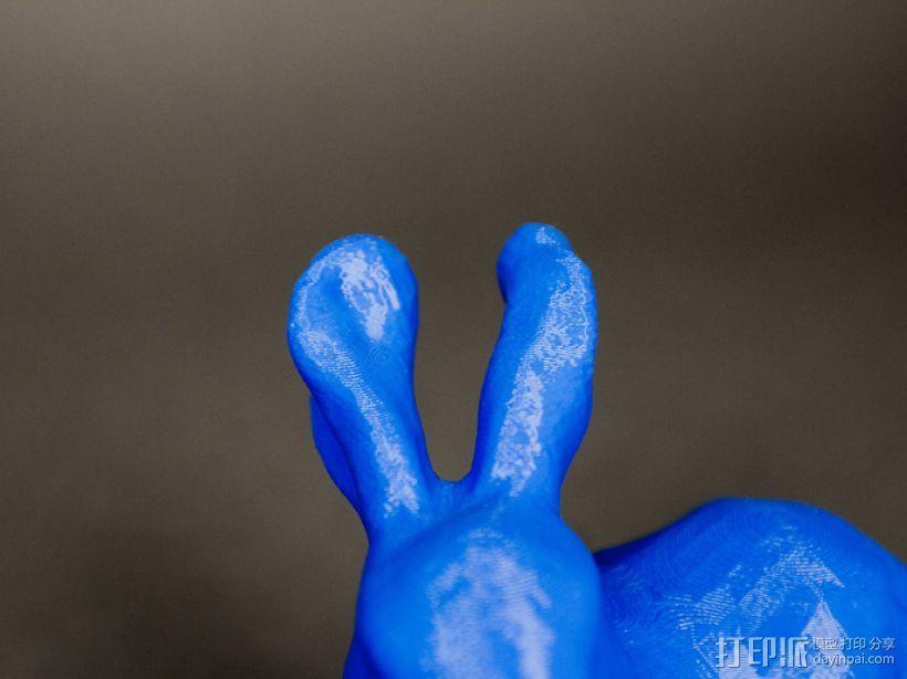 兔子模型 3D模型  图4