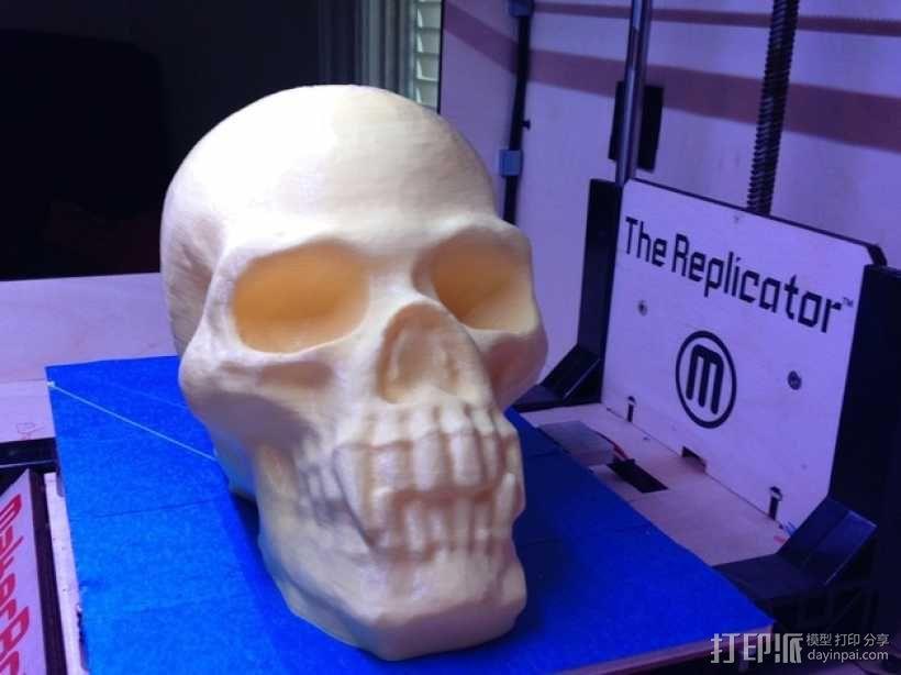 带着尖牙的骷髅 3D模型  图1