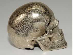 人类骷髅头 3D模型