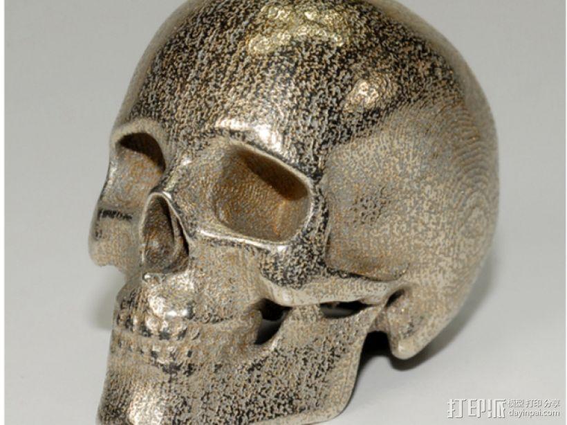 人类骷髅头 3D模型  图2