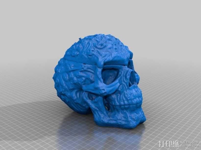 幽灵骷髅头 3D模型  图3