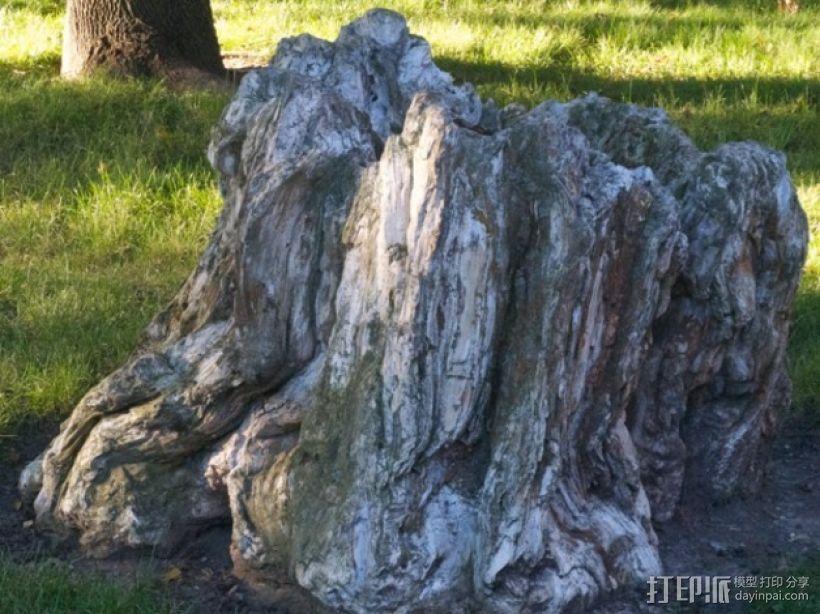岩石化的树桩雕塑  3D模型  图1
