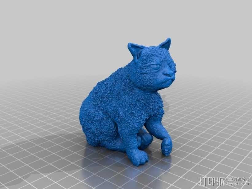 暴躁的猫 模型 3D模型  图4