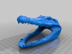 短吻鳄 鳄鱼头 3D模型
