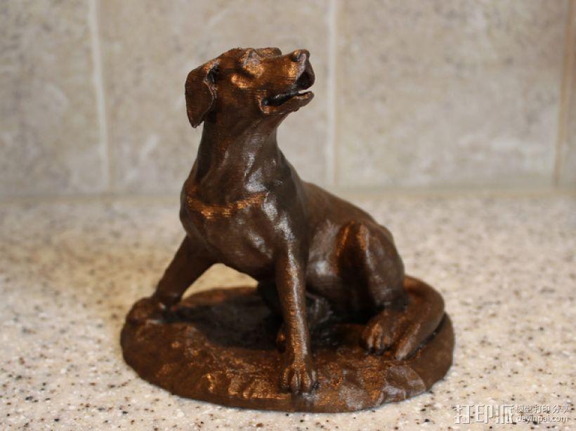 拉布拉多犬 模型 3D模型  图1