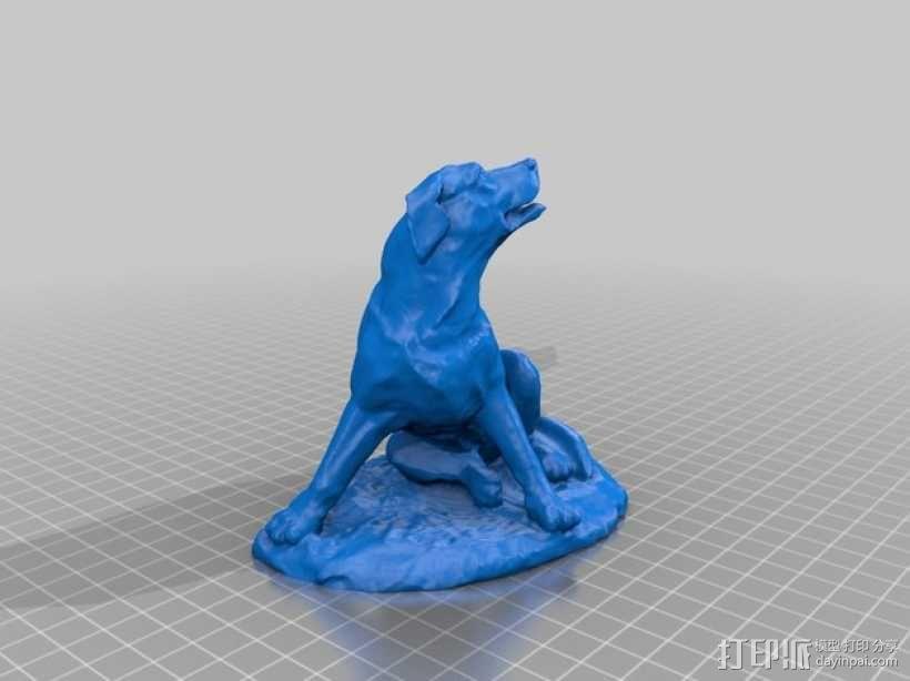 拉布拉多犬 模型 3D模型  图3