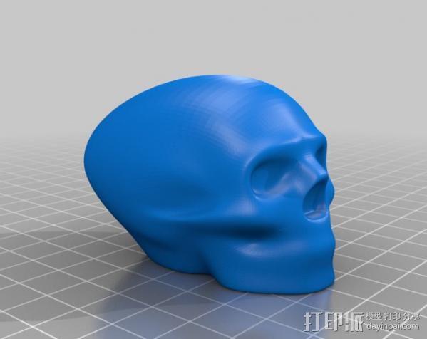 头骨 模型 3D模型  图3