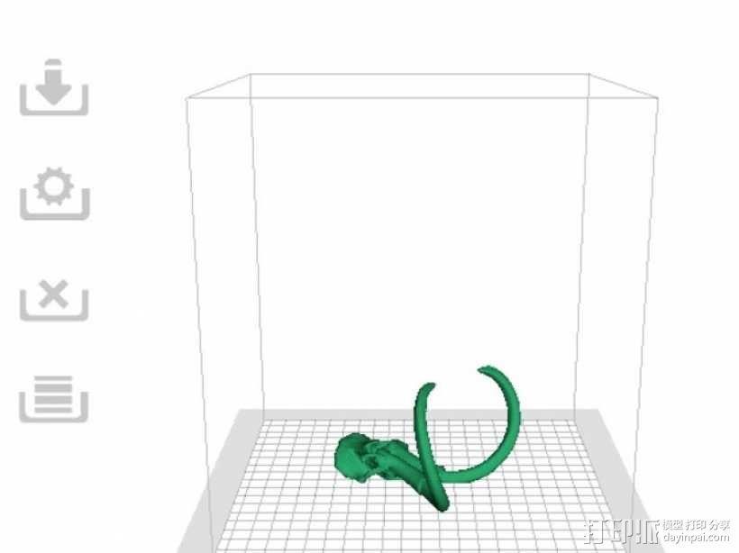 长毛象头骨模型 3D模型  图5
