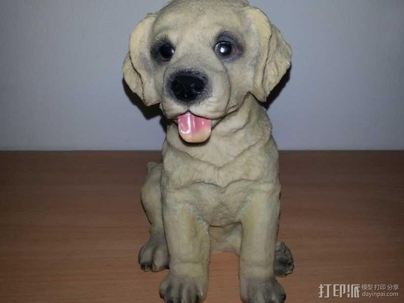 小拉布拉多犬模型 3D模型  图1