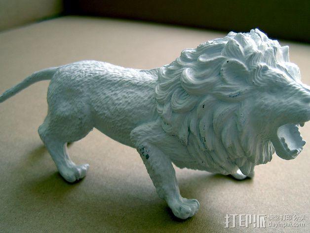 非洲狮 模型 3D模型  图4