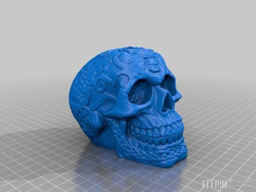 凯尔特头骨 3D模型  图1
