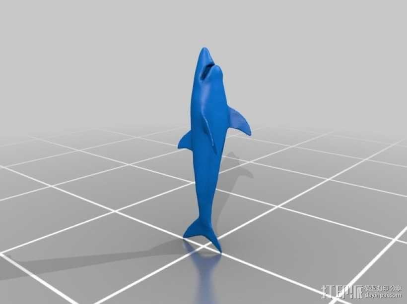 大白鲨模型 3D模型  图2