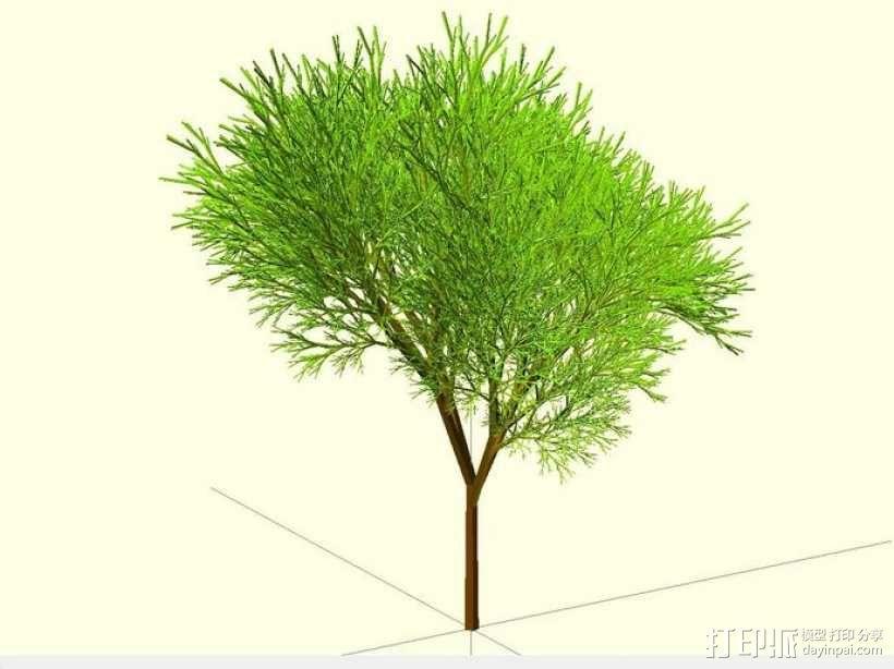 树 模型 3D模型  图1