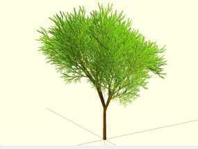 树 模型 3D模型