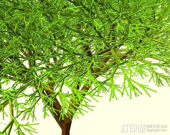 树 模型 3D模型  图2