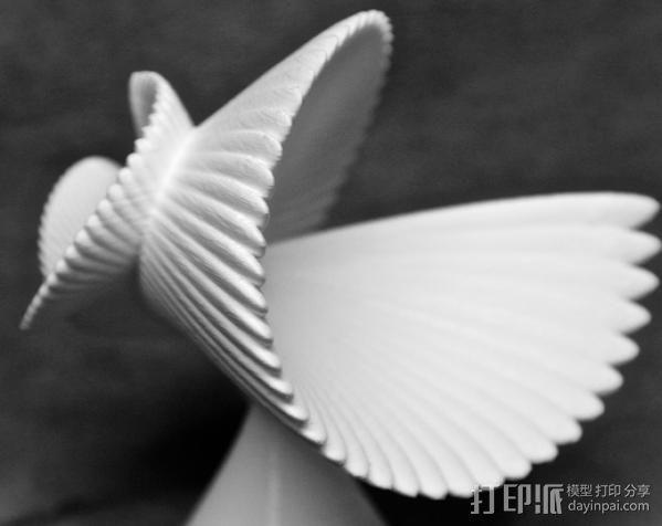 贝壳花 3D模型  图5