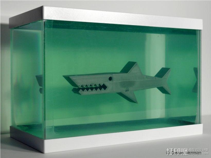 鲨鱼模型 3D模型  图1