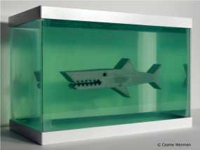 鲨鱼模型 3D模型