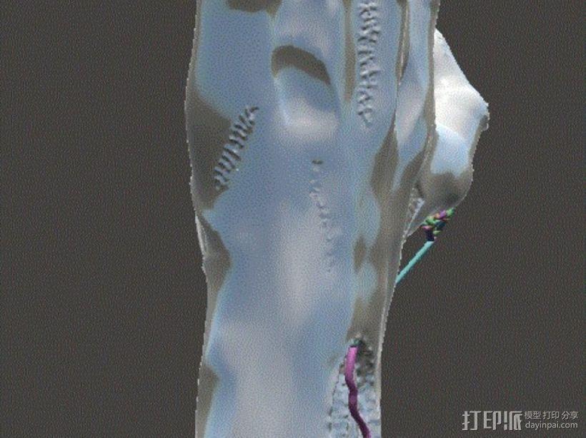 僵尸手 模型 3D模型  图9