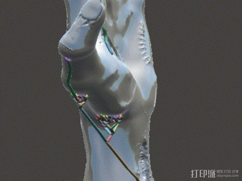 僵尸手 模型 3D模型  图14