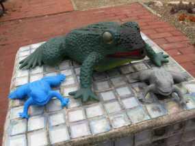 花园蛙 3D模型