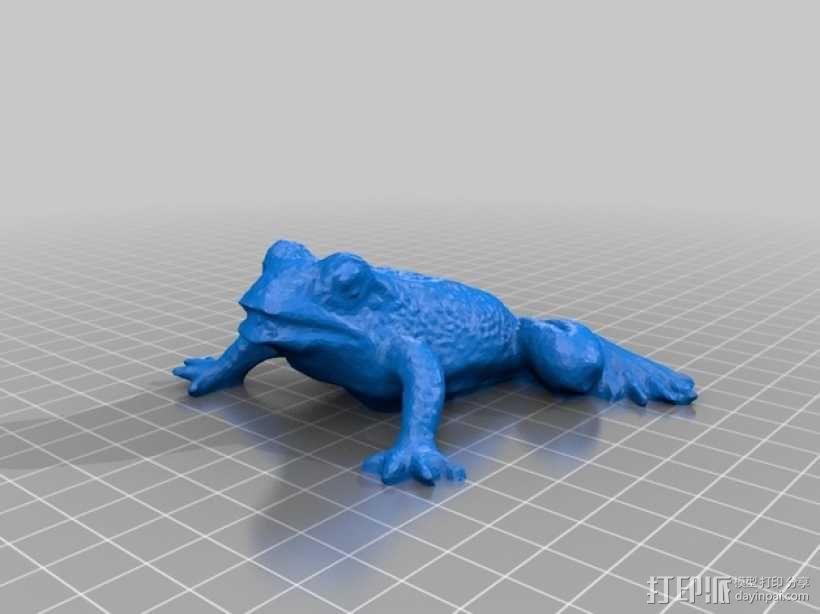 花园蛙 3D模型  图2