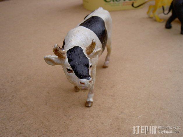 农场奶牛 3D模型  图5