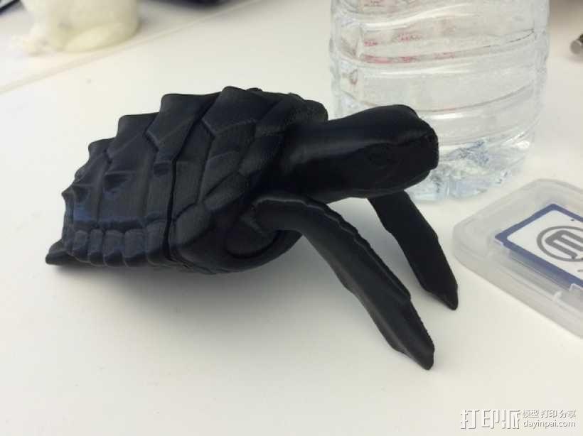 乌龟 3D模型  图1