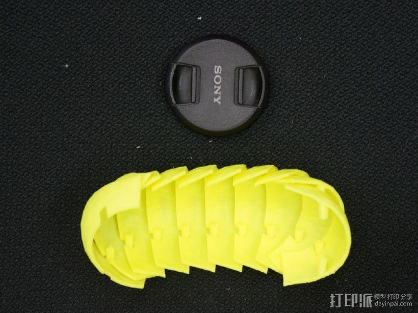 球潮虫模型 3D模型  图4