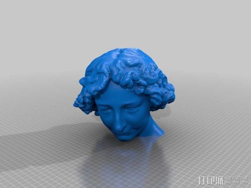 大卫雕塑 3D模型  图10
