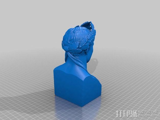 拿破仑半身像模型 3D模型  图4