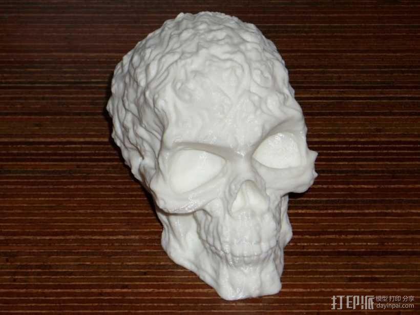 中空的骷髅 3D模型  图2