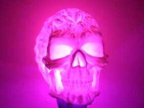 中空的骷髅 3D模型