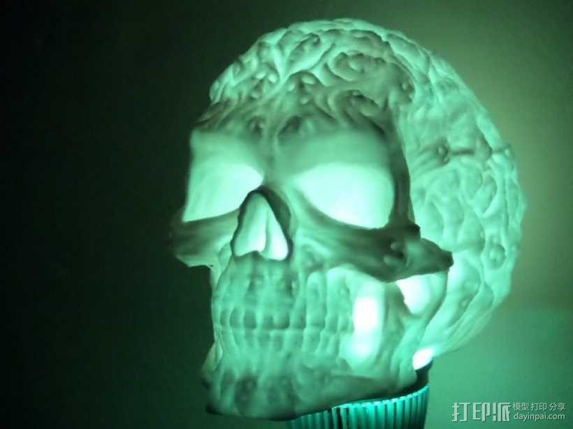 中空的骷髅 3D模型  图4