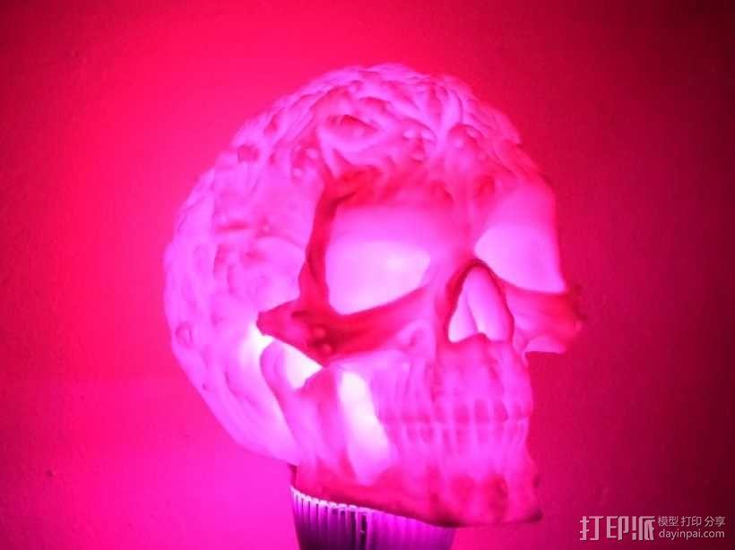 中空的骷髅 3D模型  图6