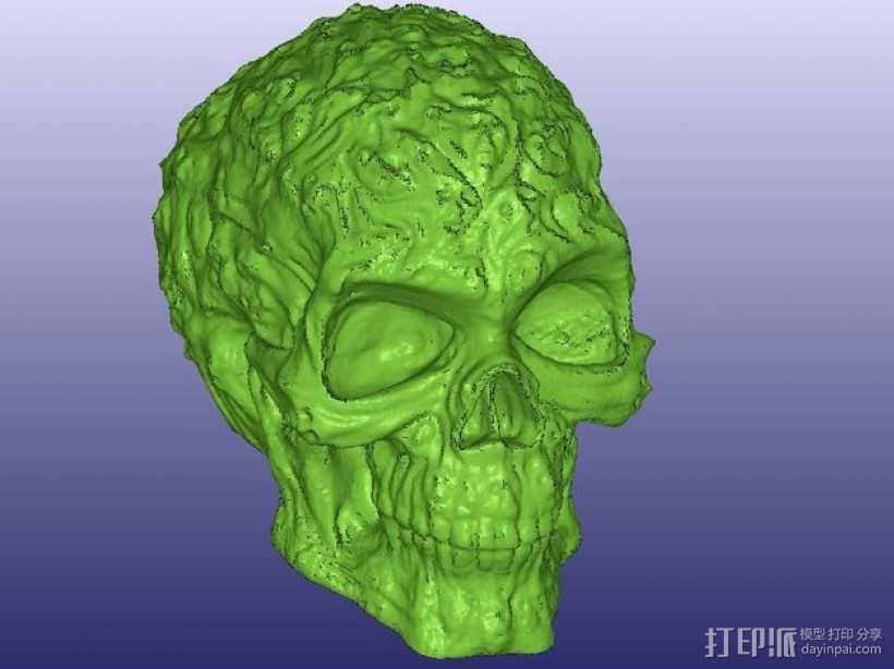 中空的骷髅 3D模型  图7