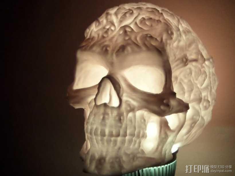 中空的骷髅 3D模型  图5