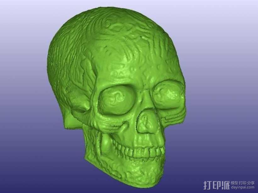 凯尔特中空骷髅 3D模型  图1