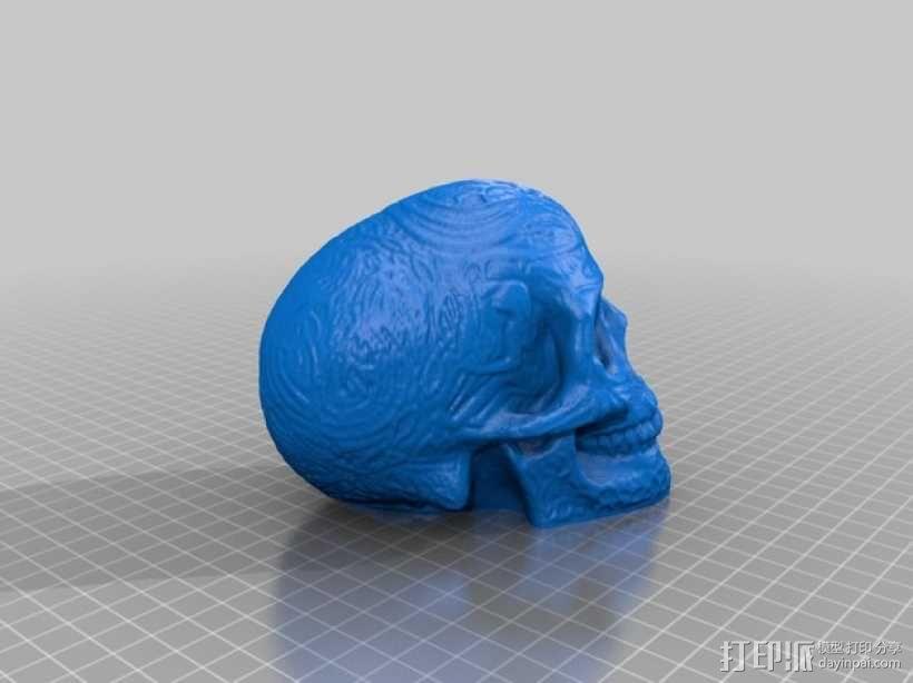 凯尔特中空骷髅 3D模型  图2