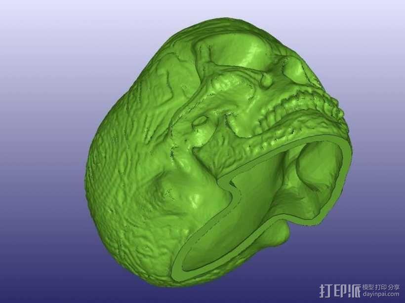 凯尔特中空骷髅 3D模型  图3