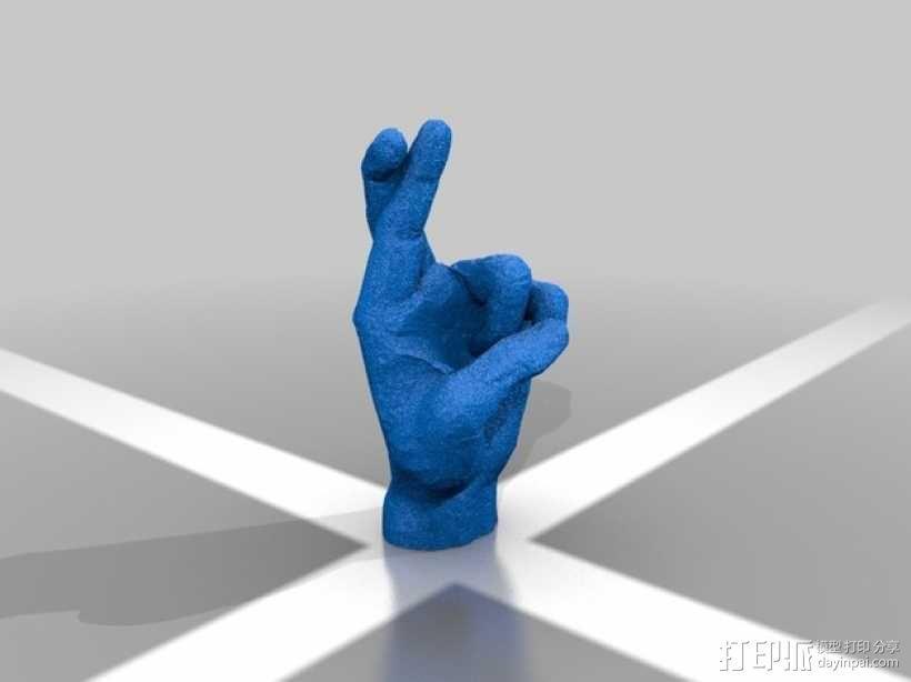 交叉的手指 3D模型  图2