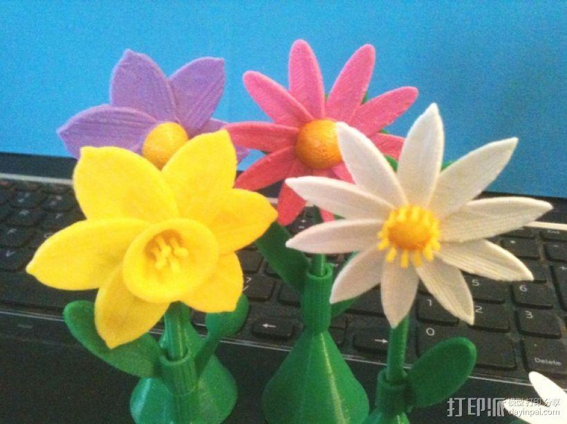 太阳花 彩色花 3D模型  图3