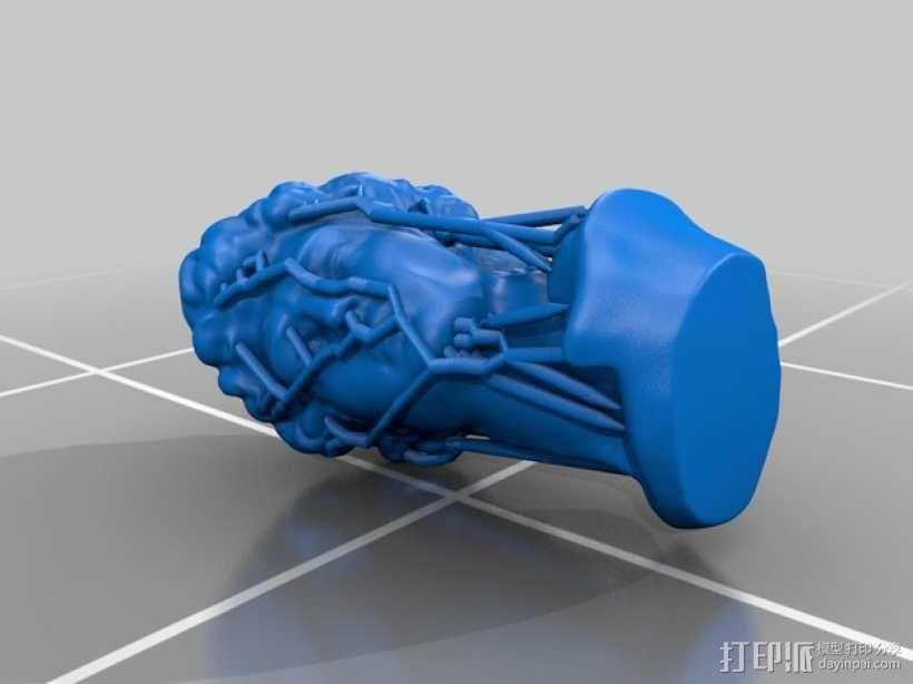 大卫头部雕塑 3D模型  图2