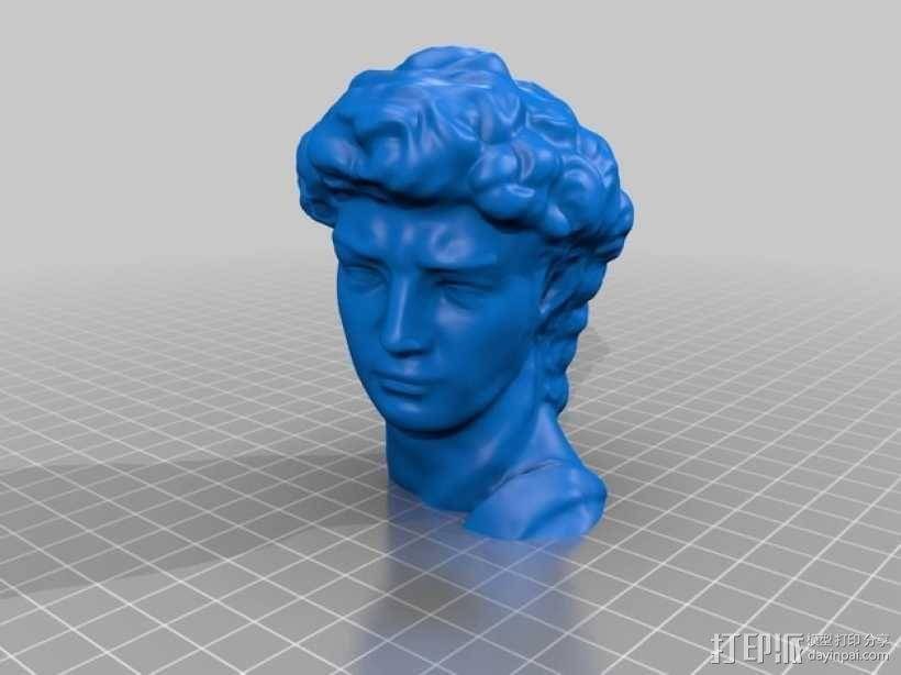 大卫头部雕塑 3D模型  图3