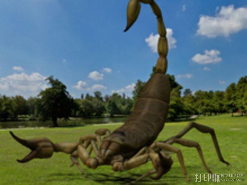 蝎子 3D模型  图1