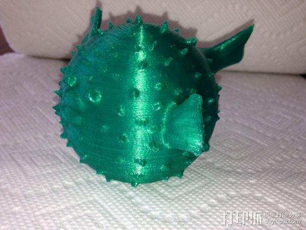 河豚模型 3D模型  图5